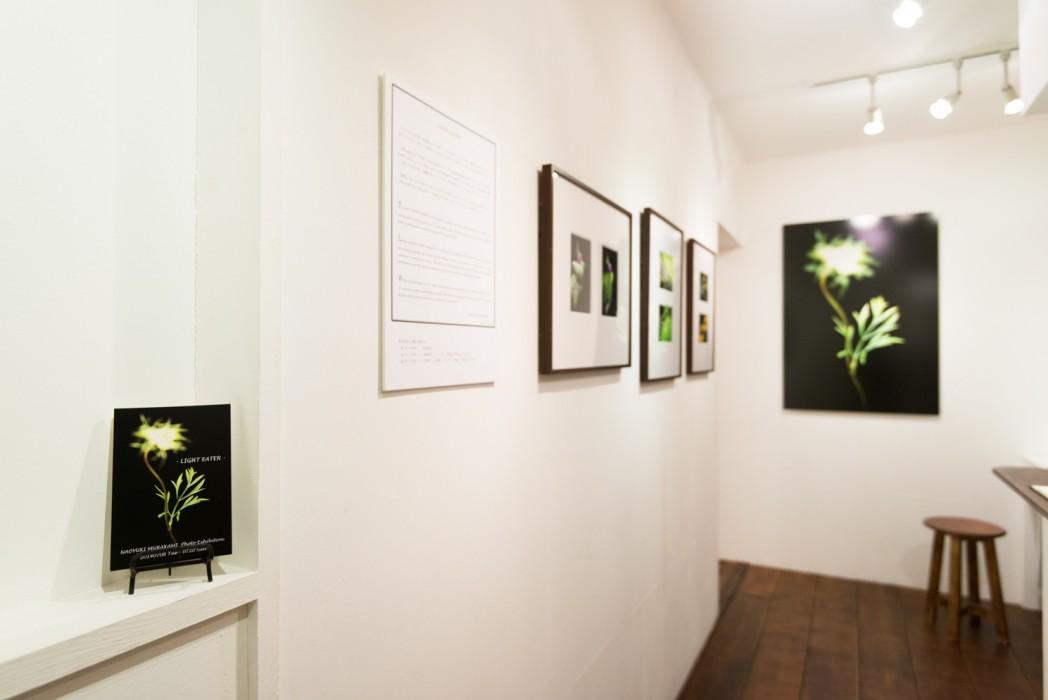 201407_exhibition_01