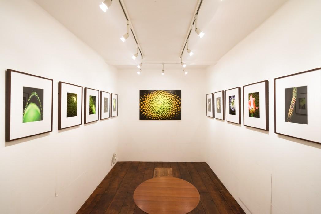 201407_exhibition_04