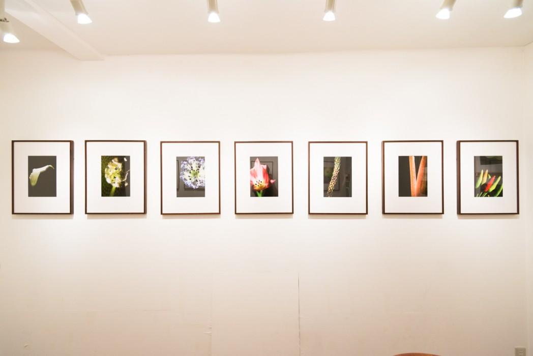 201407_exhibition_06