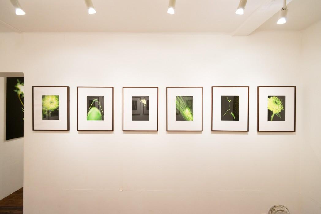 201407_exhibition_07